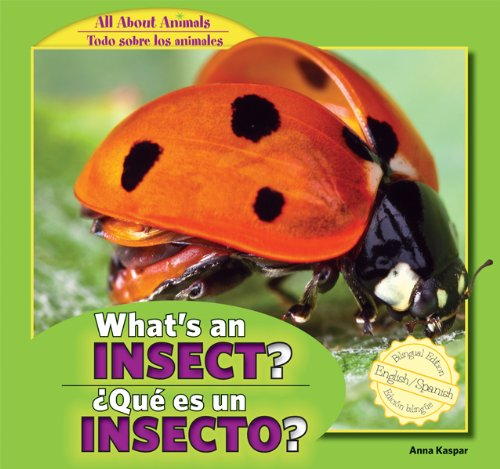9781448867042: What's an Insect? / Que Es Un Insecto? (All about Animals / Todo Sobre Los Animales)