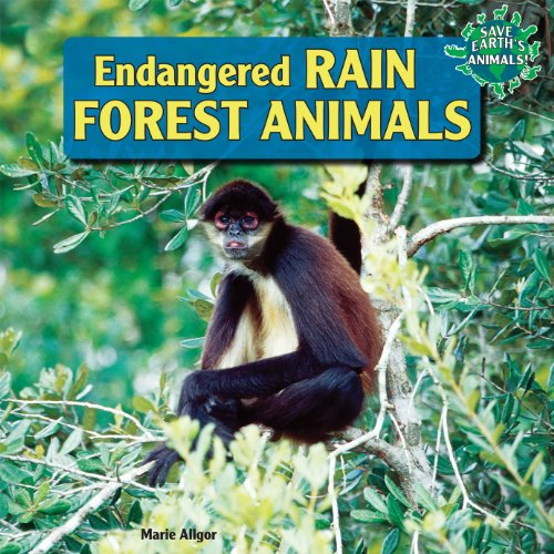 Endangered Rain Forest Animals (Library Binding): Marie Allgor