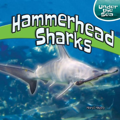 Hammerhead Sharks (Under the Sea (Powerkids)): Magby, Meryl