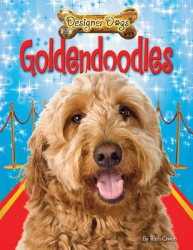 9781448878567: Goldendoodles (Designer Dogs)