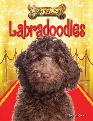 9781448878574: Labradoodles (Designer Dogs)