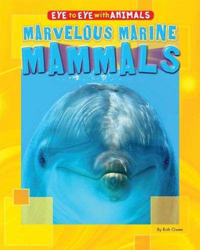 Marvelous Marine Mammals (Eye to Eye With Animals): Owen, Ruth