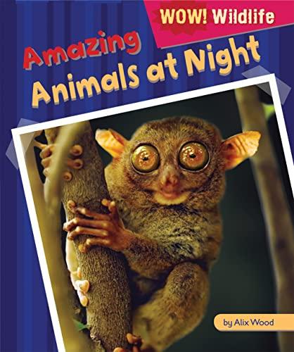 Amazing Animals at Night (Wow! Wildlife): Wood, Alix