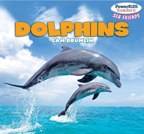 Dolphins (Library Binding): Sam Drumlin