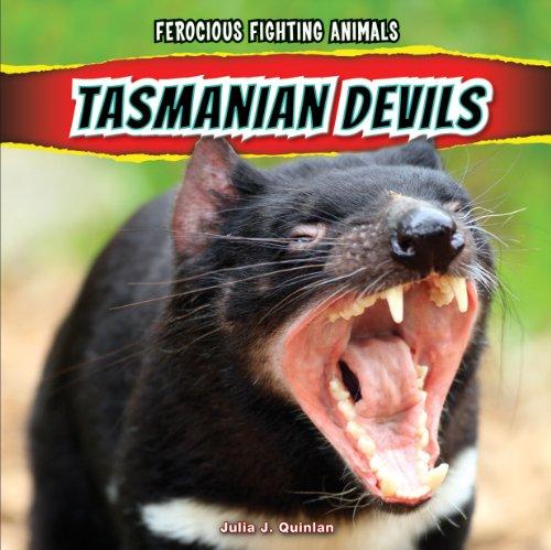 Tasmanian Devils Ferocious Fighting Animals: Julia J. Quinlan