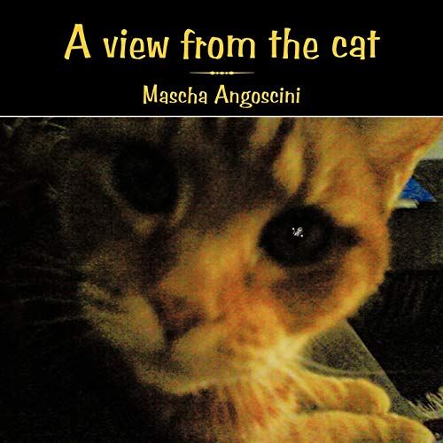 9781449035044: A View from the Cat
