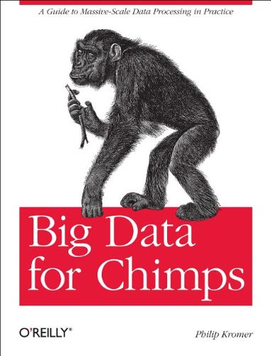 9781449335960: Big Data for Chimps