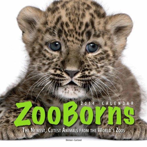 9781449433505: ZooBorns 2014 Wall Calendar