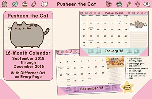9781449470609: Pusheen the Cat 2015-2016 16-Month Desk Pad Calendar
