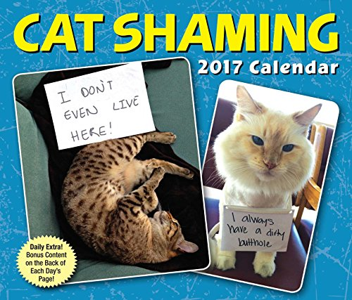9781449476083: Cat Shaming 2017 Day-To-Day Calendar