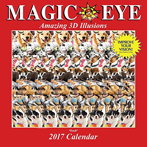 9781449477028: Magic Eye 2017 Wall Calendar (Square Wall)