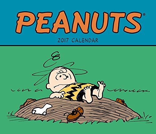 9781449477349: Peanuts 2017 Weekly Desk Diary