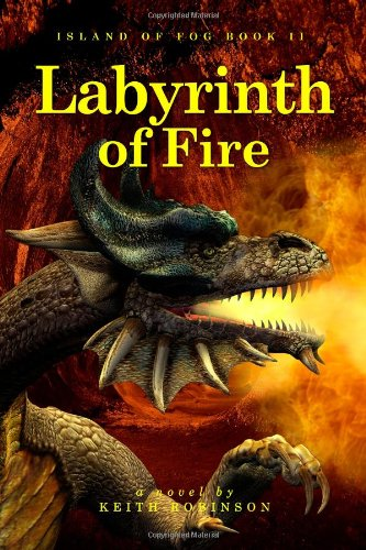 9781449538033: Labyrinth of Fire