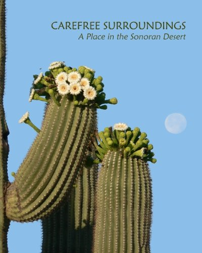 Carefree Surroundings: A Place in the Sonoran: Kagerer, Margit, Kagerer,