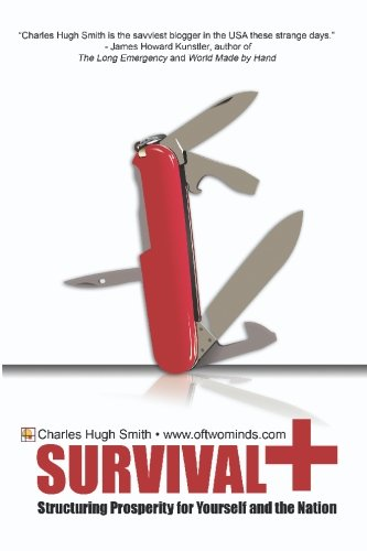 9781449563448: Survival+: Structuring Prosperity for Yourself and the Nation
