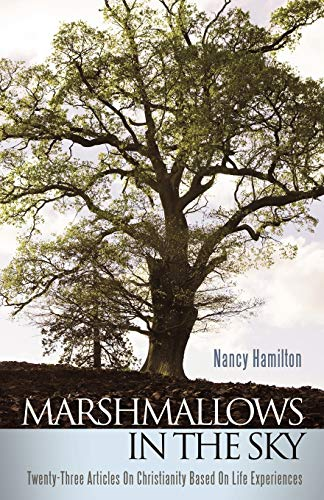 9781449702076: Marshmallows In The Sky: Twenty-Three Articles On Christianity Based On Life Experiences