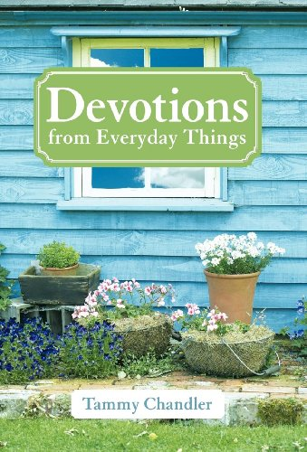 9781449731168: Devotions from Everyday Things