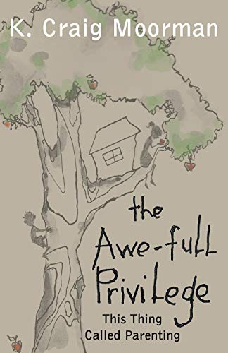 9781449777067: The Awe-Full Privilege : This Thing Called Parenting