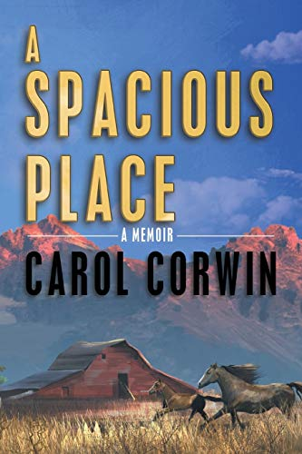 A Spacious Place: Carol Corwin