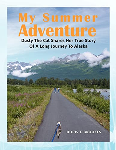 My Summer Adventure (Paperback)