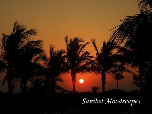 9781450739894: Sanibel Moodscapes