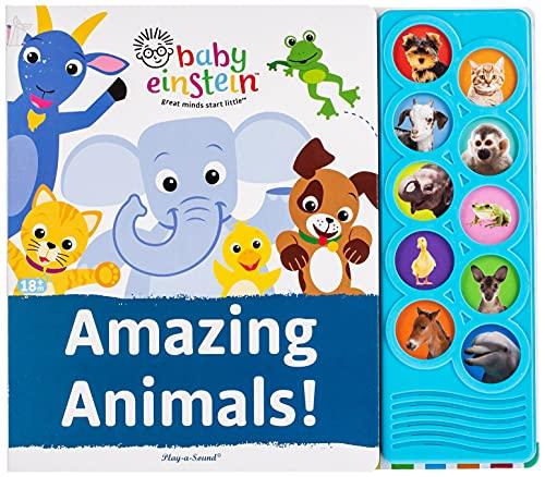 9781450830812: Baby Einstein: Amazing Animals!