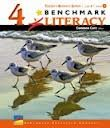 Benchmark Education; Getting Started Program Strategies and Skills Grade 4