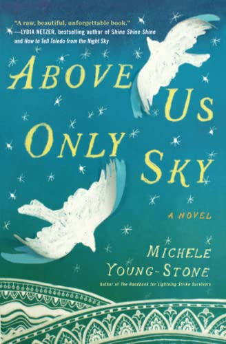 9781451657685: Above Us Only Sky: A Novel
