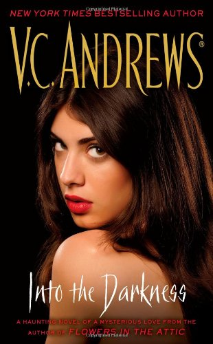 Into the Darkness: Andrews, V.C.
