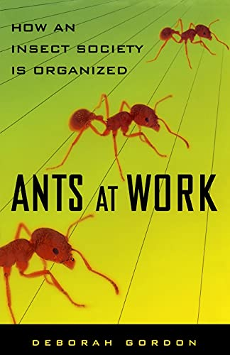 9781451665703: Ants At Work: How An Insect Society Is Organized