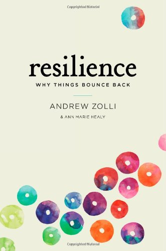 9781451683806: Resilience: Why Things Bounce Back