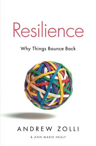 9781451683813: Resilience: Why Things Bounce Back