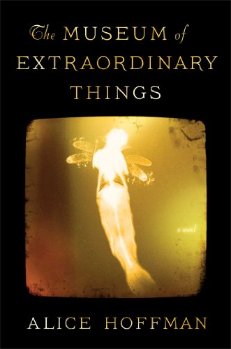 9781451693560: The Museum of Extraordinary Things: A Novel