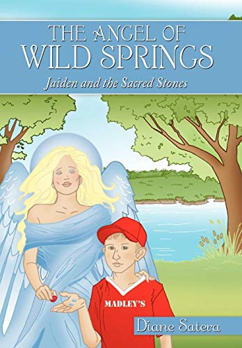 9781452034607: The Angel of Wild Springs: Jaiden and the Sacred Stones