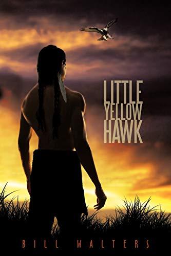 9781452056265: Little Yellow Hawk