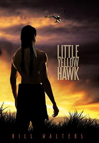 9781452056272: Little Yellow Hawk