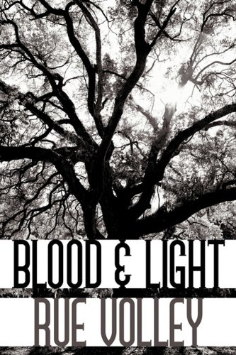 9781452090375: Blood & Light