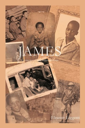 9781452096346: James: A Young Man With an Unplanned Future