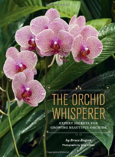 9781452101286: The Orchid Whisperer: Expert Secrets for Growing Beautiful Orchids