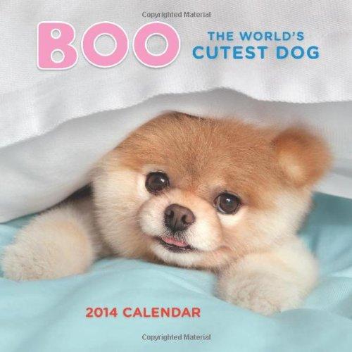 9781452115702: Boo the World's Cutest Dog 2014 Calendar (Wall Calendars)