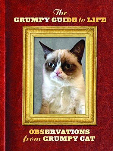 The Grumpy Cat Guide to Life: Observations: Grumpy Cat