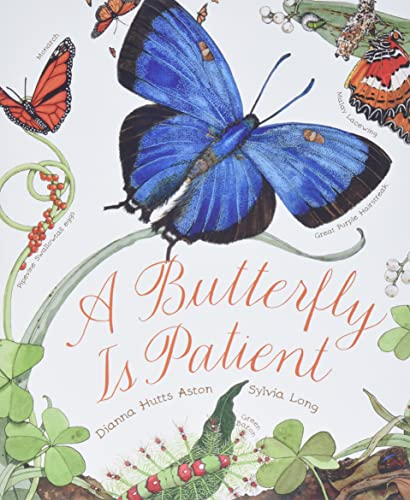 9781452141244: A Butterfly Is Patient