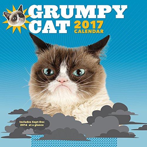 9781452145464: Grumpy Cat 2017 Wall Calendar