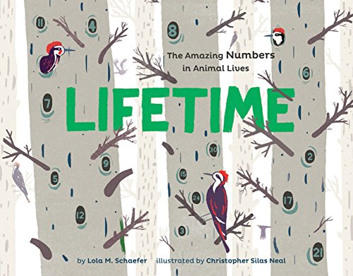 9781452152103: Lifetime: The Amazing Numbers in Animal Lives