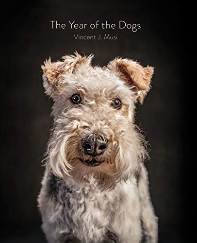 9781452181929: The Year of the Dogs