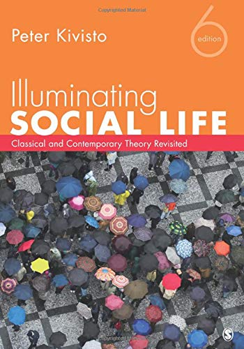 9781452217826: Illuminating Social Life: Classical and Contemporary Theory Revisited