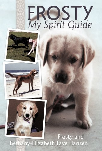 Frosty My Spirit Guide: How Changing Our Perceptions of Death Can Bring Us More Love, Joy, ...