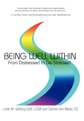 9781452541006: Being Well Within: From Distressed to de-Stressed