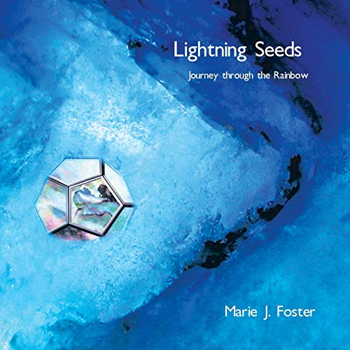 Lightning Seeds: Journey Through the Rainbow (Paperback): Marie J Foster
