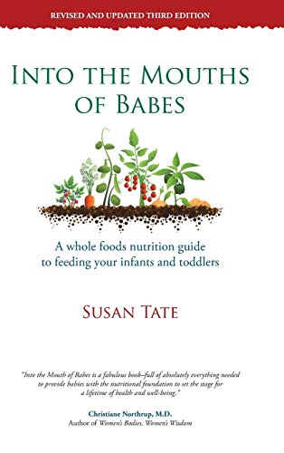 9781452573366: Into the Mouths of Babes: A Whole Foods Nutrition Guide to Feeding Your Infants and Toddlers